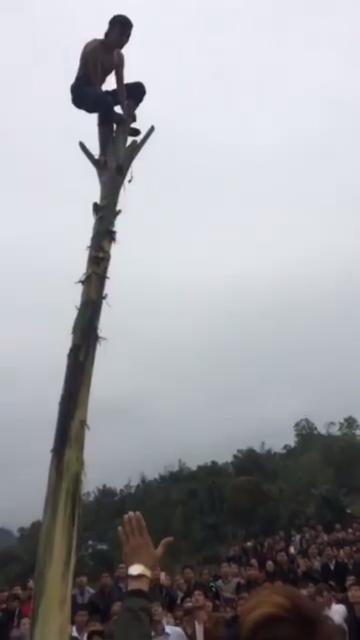 Nạn nhân bất ngờ rơi xuống trong trò chơi trèo cây chuối hột. Ảnh cắt từ clip