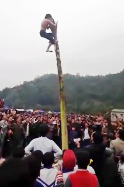 Nam thanh niên cố gắng đứng lên ngọn cây bằng được nên đã ngã xuống đất. Ảnh cắt từ clip