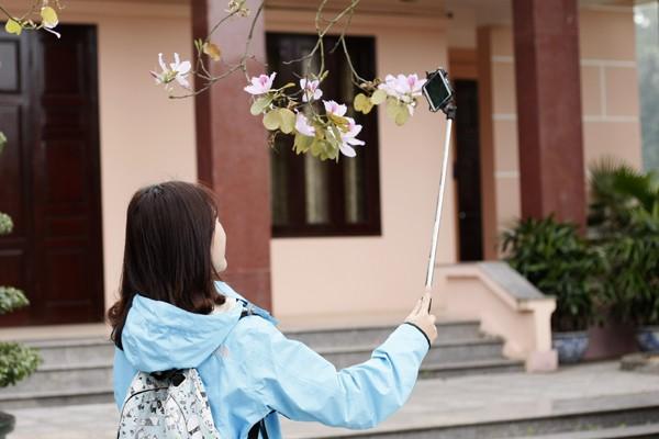 Thiếu nữ selfie với hoa ban trắng.