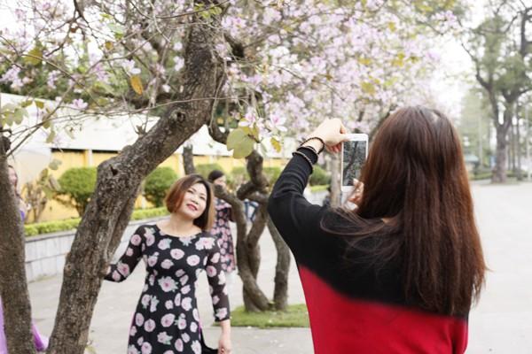 Các chị em mê chụp ảnh không thể bỏ qua cơ hội được tạo dáng bên loài hoa đặc trưng của núi rừng Tây Bắc.