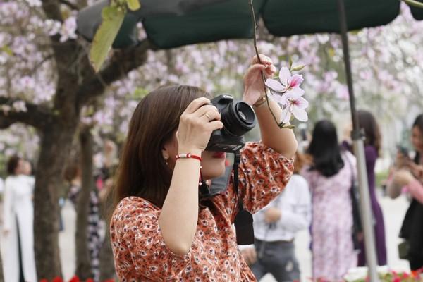 Một nữ nhiếp ảnh gia chụp cận cảnh vẻ đẹp của những cánh hoa.