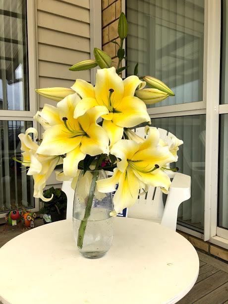 Có thể dử dụng các dung dịch glucoza, sacaroza 3-5%, AgNO3, Chrysal RVB… để bảo quản và giữ hoa tươi lâu.
