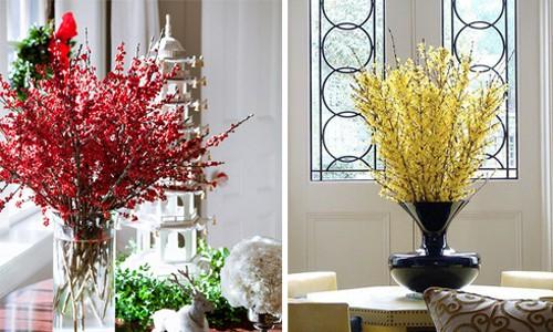 Hoa đông đào (trái) và hoa mai Mỹ (phải) được nhiều người ưa thích vì có màu sắc rực rỡ, đem lại cảm giác tươi vui cho ngôi nhà dịp năm mới. Ảnh: Pinterest.