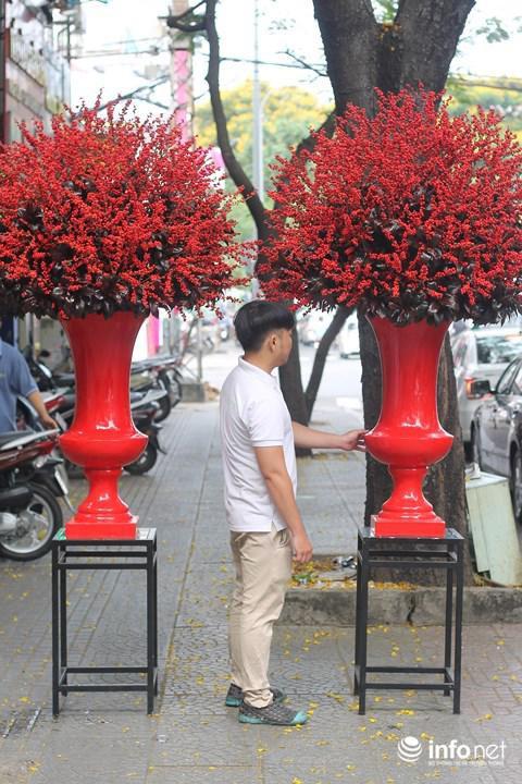 Một đại gia đã chi 160 triệu đồng để mua cặp đông đào đỏ này.