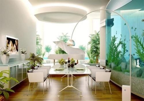Vị trí đẹp nhất để bể cá là ở phòng khách