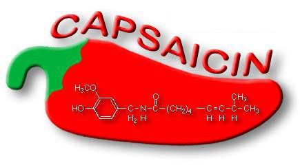 Ớt chưa chất cay capsaicin