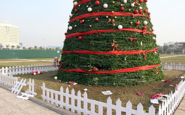 Cây thông khủng lần đầu tiên xuất hiện ở Bắc Giang nhưng chẳng mấy chốc đã bị người dân phá tan tác sau đêm Noel. Ảnh: báo Bắc Giang