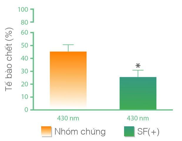 Broccophane giúp giảm tỷ lệ tế bào võng mạc chết do tác động của ánh sáng xanh. (Nguồn: Nghiên cứu Rejuvenation Research, Vol. 9, No 2, 2006.)