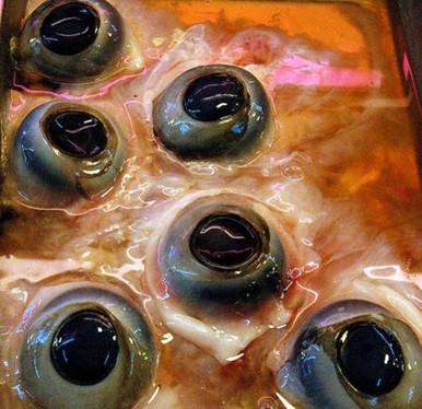 Đặc sản mắt cá ngừ đại dương: Không can đảm đố dám ăn