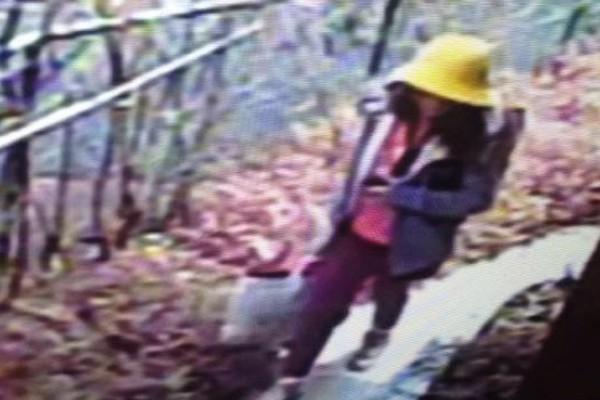 Hình ảnh cuối cùng của bé Nhật Linh trước khi bị bắt cóc và sát hại.
