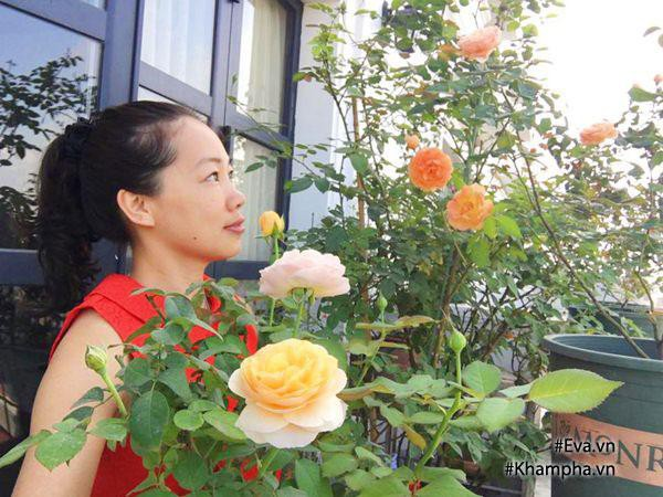Chị Hà bên hoa hồng Juliet rose. Chị trồng hoa hồng từ năm 2013.