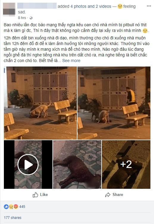 Hà Nội: Chủ nhân đau đớn chứng kiến chó cưng Poodle bị 2 con Pitbull cắn xé tới chết mà chẳng thể làm gì