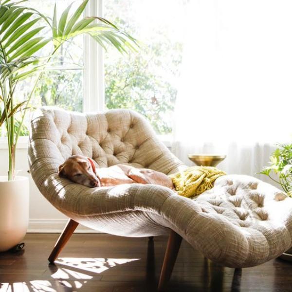 Một chiếc ghế ngồi có thể duỗi thẳng chân, thêm điểm nhấn từ cây cỏ xung quanh tạo nên góc thư giãn bình yên và lãng mạn.