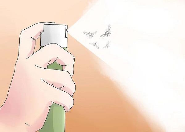 Cần diệt sạch côn trùng như kiến cánh, mối cánh triệt để để không ảnh hưởng tới sinh hoạt của gia đình.