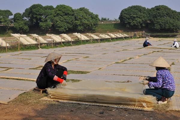 Làng So được xem là nơi làm miến truyền thống lâu đời lớn nhất Việt Nam.