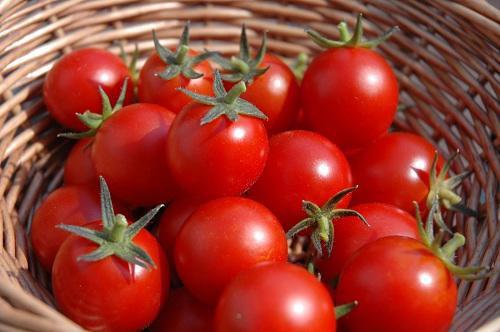 Cà chua là nguyên liệu để có cách làm trắng da mặt tự nhiên hiệu quả