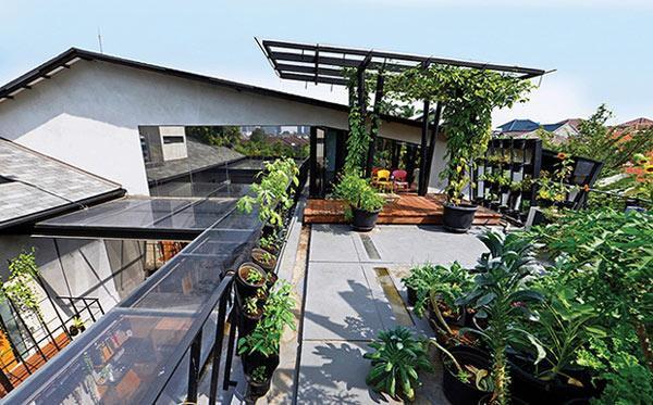 Một khu vườn rộng rãi được bố trí ngay trên sân thượng của tòa nhà này.