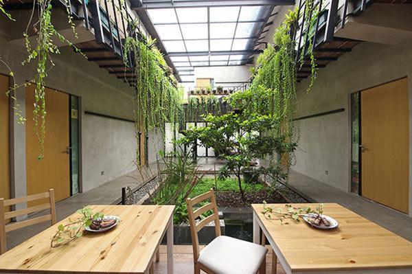 Nhằm đáp ứng mong muốn của khách hàng có sân vườn ngay trong nhà, kiến trúc sư đã thiết kế một khu vườn nhỏ ngay giữa tầng 1, phía dưới giếng trời.