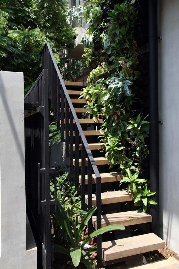 Cầu thang gỗ với tay vịn bằng sắt sơn đen cũng biến thành một vườn cây nho nhỏ.