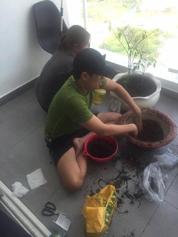 Kiều Minh Tuấn tận dụng không gian ban công để trồng cây.