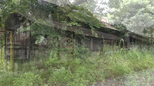 Cảnh hoang tàn tại Nhà máy thép Gia Sàng. Ảnh: PV