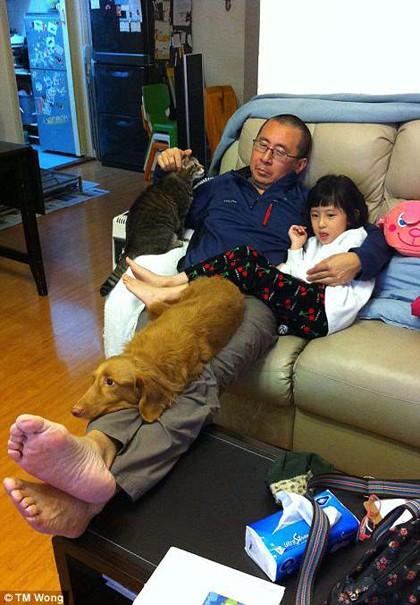 Tôi đã rất mệt. Tôi vừa thay tã cho con gái và ôm con nghỉ ngơi trên ghế. Đột nhiên, hai con vật nuôi leo lên ghế nằm cùng, khiến tôi không còn chỗ nào để di dịch, anh Wong nhớ lại.