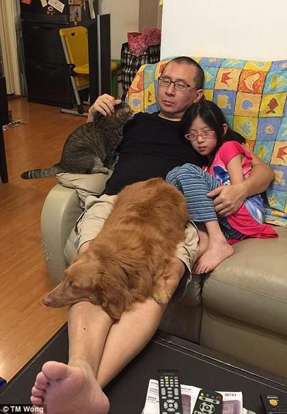 Người đàn ông 49 tuổi này cho biết, rất vui khi album được quan tâm, nhưng sẽ tốt hơn nếu mọi người biết ý nghĩa đằng sau những bức ảnh này. Nhiều gia đình ở Trung Quốc từ bỏ những con vật nuôi khi người phụ nữ trong nhà mang thai, vì lông hoặc phân của chúng sẽ gây ảnh hưởng đến sức khoẻ của mẹ và trẻ sơ sinh.