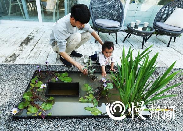 Anh Rabbit cùng con gái bên chiếc ao mini giữa vườn hoa.