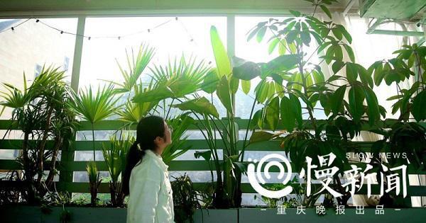 Nhiều du khách đến tham quan không quên chụp và lưu lại những bức ảnh sống ảo tuyệt đẹp bên khu vườn.