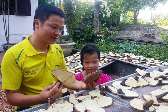 Anh Kiên cùng thành quả là những cây nấm linh chi khô chuẩn bị xuất bán với giá 800 nghìn đồng/kg.