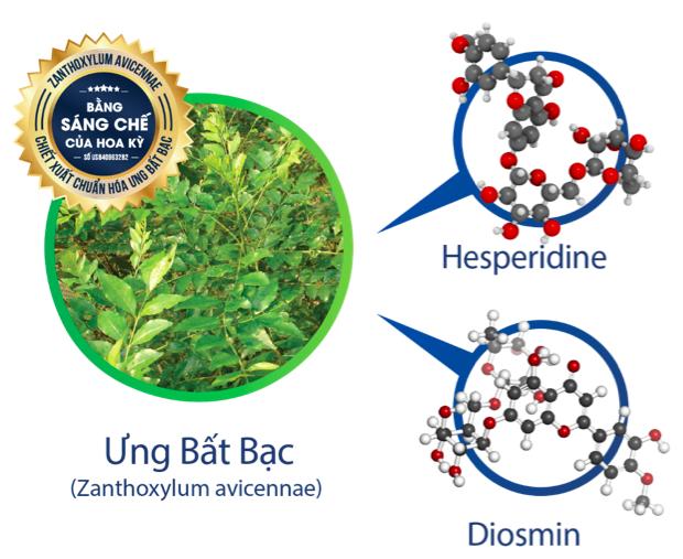 Ưng Bất Bạc chứa Hesperidine và Diosmingiúp phục hồi và tái tạo tế bào gan