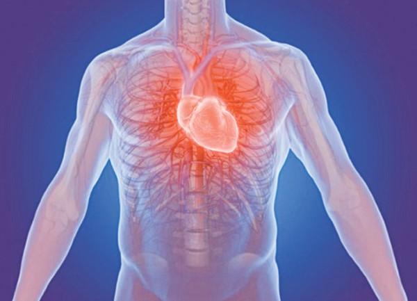 Các loại van cơ thể, đặc biệt là ở tim đóng vai trò quan trọng