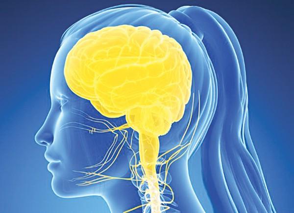 """Dịch não tủy được xem là một """"hàn thử biểu"""" phản ảnh tình trạng sức khỏe của não bộ và cơ thể"""