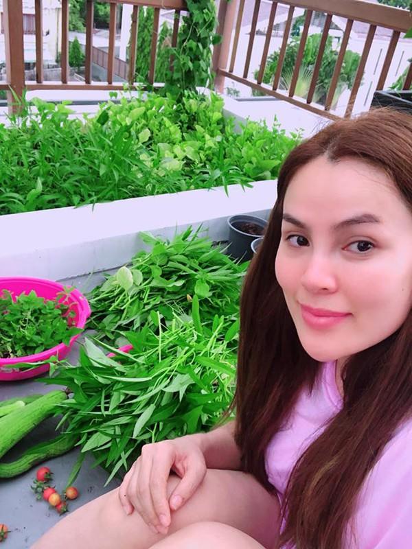 Người đẹp khoe thành quả làm nông dân của mình. Phương Lê cho biết gia đình cô quanh năm không phải mua rau mà ăn không hết còn đem tặng cho nhiều bạn bè.