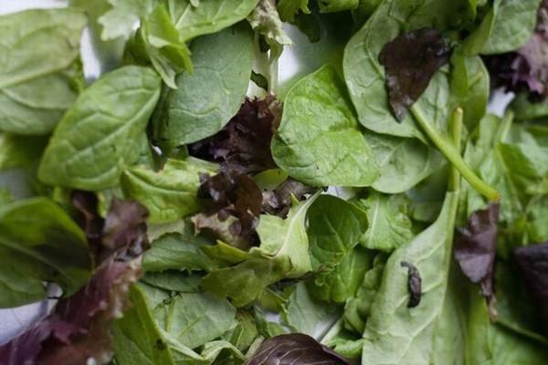 Các loại rau lá xanh có chứa một lượng nitrat nhất định, với thời gian bảo quản lâu sẽ chuyển thành nitrite dưới tác động của các vi khuẩn và các chất xúc tác tự có trong rau củ.