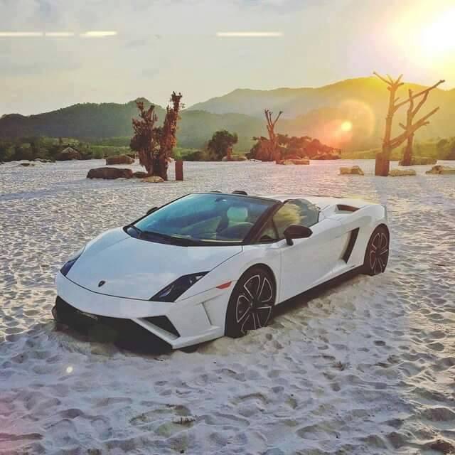 Tháng 4/2016, chiếc Lamborghini Gallardo LP560-4 Spyder đầu tiên và duy nhất được nhập về Việt Nam, sau đó nhanh chóng được đưa về gara của ông Đặng Lê Nguyên Vũ ở MDrắk. Xe sử dụng động cơ V10, 5.2 lít hút khí tự nhiên, công suất 560 mã lực, dẫn động 4 bánh. Khả năng tăng tốc từ 0-100 km/h trong 3,7 giây, trước khi đạt tốc độ tối đa 325 km/h.