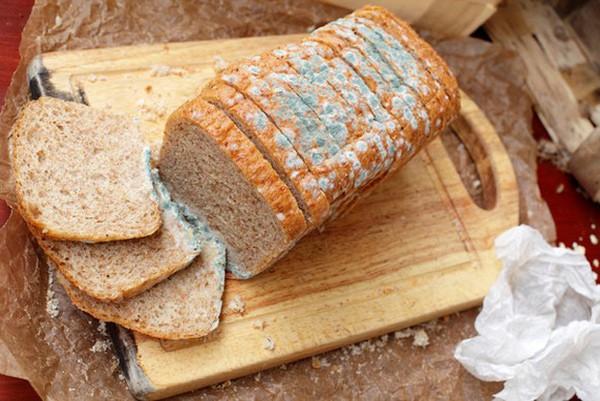 Aflatoxin sản sinh trong thực phẩm bị mốc là một trong những chất gây ung thư mạnh nhất được biết đến ở hiện tại.