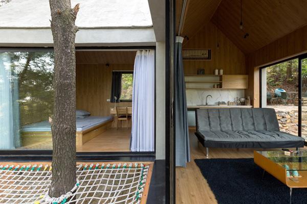 Nhà có kết cấu hình chữ L, hai khối nhà bao quanh một thân cây to có sẵn.