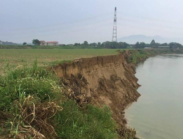 Khai thác cát khiến bờ sông Lô ngày càng sạt lở nghiêm trọng.
