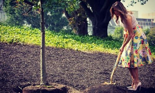 Đệ nhất phu nhân Mỹ trong buổi trồng cây tại Nhà Trắng hôm 28/8. Ảnh: AP.