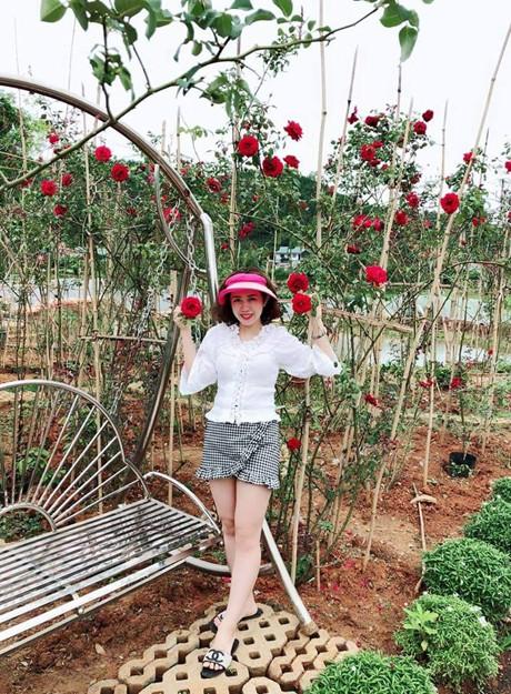 Vườn Hồng Nhà Chị Nguyệt Đang Độ Nở Hoa, Khoe Sắc, Hút Hồn Khách