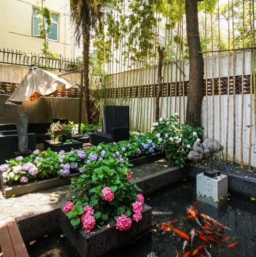 Không gian phía ngoài được đôi vợ chồng cải tạo với vườn hoa ao cá, hút mắt mọi vị khách đến chơi nhà.