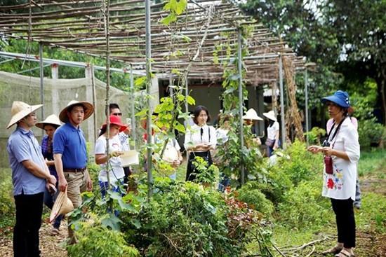 Du lịch nông nghiệp ở Việt Nam còn manh mún, chưa phát triển