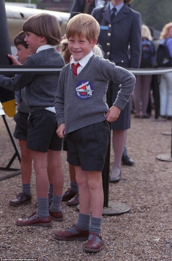 Sự vui vẻ, hạnh phúc ở trường hoàng gia của Harry.