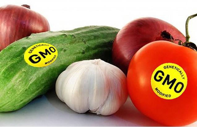 Thực phẩm biến đổi gen đã được sử dụng trên thế giới từ lâu