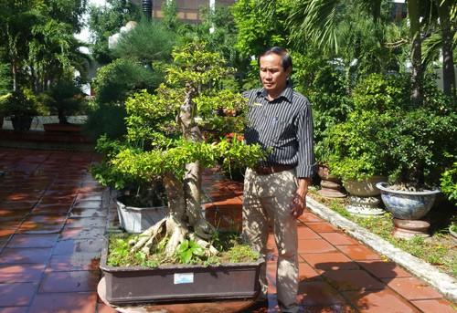 Nhờ trồng cây cảnh, mỗi năm ông Nguyễn Văn Quý thu nhập cả tỷ đồng. Ảnh: T.K.O