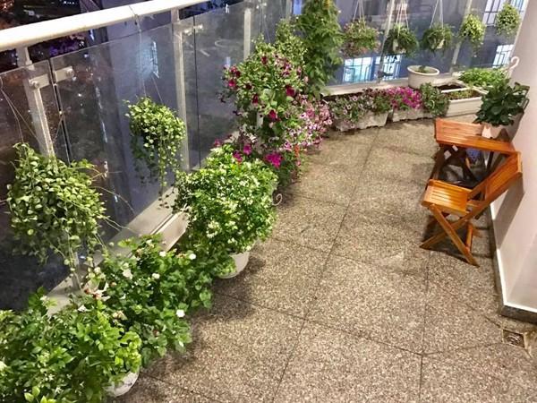 Thân Thúy Hà thường dành thời gian thư giãn trên ban công nhà sau một ngày làm việc mệt mỏi. Căn hộ có ban công rộng nên chị tận dụng khoảng không trồng các loại hoa.