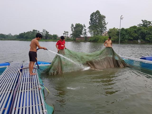 Công nhân trang trại thường xuyên phải kiểm tra tình trạng cá và vệ sinh hồ nuôi. Ảnh: Hoàng Huyền