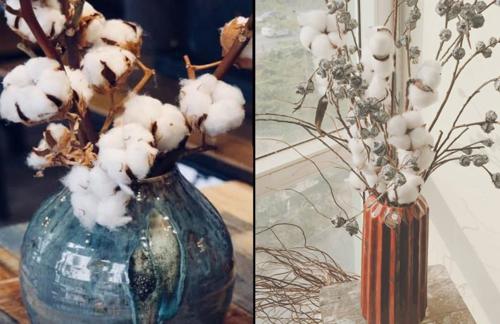 Hoa cotton khô khi bung nở trắng muốt như hoa cây bông, tạo vẻ duyên dáng cho nhà. Loại hoa này được nhập về Việt Nam mấy năm qua, nhưng năm nay mới thực sự gây chú ý. Ảnh: Thúy Hằng.