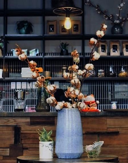 Hoa cotton khô phù hợp cắm riêng hoặc phối với các loại hoa khô khác. Ảnh: Thúy Hằng.